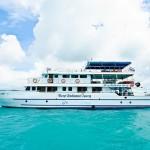 Khao Lak Tauchsafari - MV Deep-Andaman-Queen