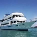 Tauchsafari Similan - MV Pawara