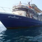 Tauchsafari nach Phi Phi Island